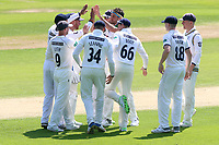 Jack Brooks of Yorkshire celebrates taking the wicket of Alastair Cook during Essex CCC vs Yorkshire CCC, Specsavers County Championship Division 1 Cricket at The Cloudfm County Ground on 4th May 2018
