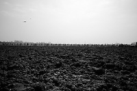 111th Paris-Roubaix 2013..stretched peloton.