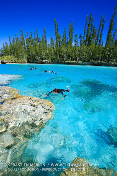 Snorkelling in the natural swimming pool oro bay isle of for Piscine naturelle ile des pins