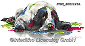 Marcello, REALISTIC ANIMALS, REALISTISCHE TIERE, ANIMALES REALISTICOS, paintings+++++,ITMCEDC1123A,#a#, EVERYDAY ,dog,paint,