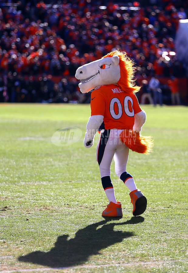 Jan 17, 2016; Denver, CO, USA; Denver Broncos mascot Miles against the Pittsburgh Steelers during the AFC Divisional round playoff game at Sports Authority Field at Mile High. Mandatory Credit: Mark J. Rebilas-USA TODAY Sports