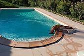 Flaviac, Ardeche<br /> France<br /> August 7, 2011<br /> <br /> Oxanna at the pool.
