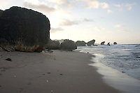 The rocks at Bathsheba in late evening light.