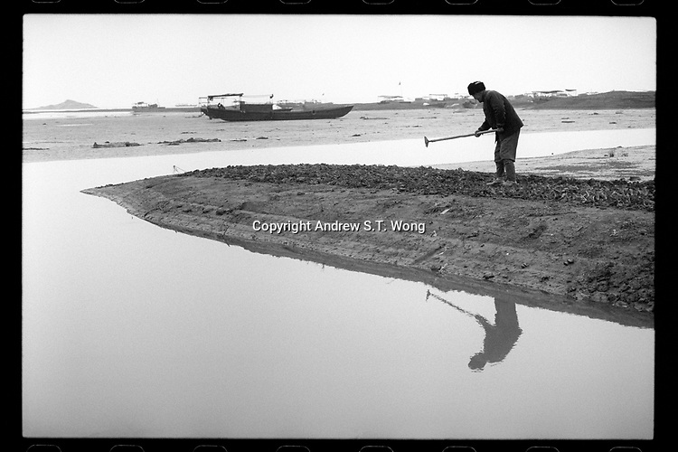 A fisherman grows vegetables on the lake side atter water receded significantly during dry season on Changshan Island in Poyang county at Poyang Lake, Jiangxi Province, November 2017. Poyang Lake, located in the north of Jiangxi Province, is the largest freshwater lake in China. It fluctuates dramatically between wet and dry seasons, from 3,500 square kilometres down to about 200 square kilometres. The lake provides a habitat for half a million migratory birds.