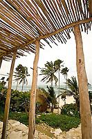 WC- Papaya Playa Hotel, Tulum Mexico 6 12