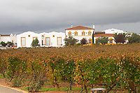 Vineyard. The winery. J Portugal Ramos Vinhos, Estremoz, Alentejo, Portugal