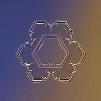 Snowflake Enif - Stellar Plate