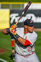 Jonathan Rodriguez (29) of the Memphis Redbirds before the game against the Salt Lake Bees in Pacific Coast League action at Smith's Ballpark on May 24, 2016 in Salt Lake City, Utah. The Bees defeated the Redbirds 7-5. (Stephen Smith/Four Seam Images)