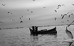 Porto,  município , Santa Vitória do Palmar  , Rio Grande do Sul, Comunidade de Pescadores , Colônia Z16.