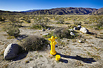 A fire hydrant located in the middle of an empty desert highlights the issue of water use and consumption in such barren environments. Anza Borrego Desert State Park, San Diego County, CA.