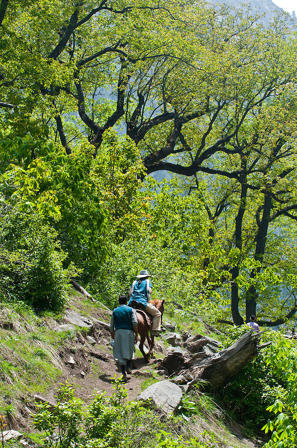 Western tourist and local guide on horseback, Gangabal Lake region of Kashmiri Himalayas, India.