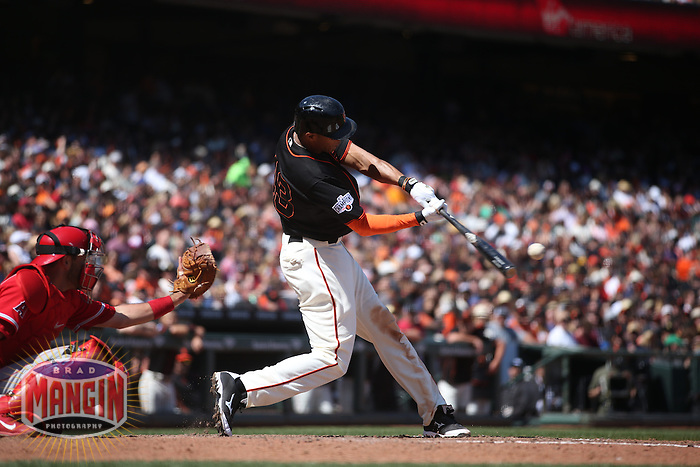 SAN FRANCISCO, CA - MAY 2:  Justin Maxwell #43 of the San Francisco Giants bats against the Los Angeles Angels during the game at AT&T Park on Saturday, May 2, 2015 in San Francisco, California. Photo by Brad Mangin