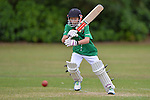 Junior Cricket at Greenmeadows