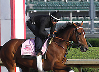 May 1, 2014: Empress of Midway gallops in preparation for the Kentucky Oaks at Churchill Downs in Louisville, KY. Zoe Metz/ESW/CSM