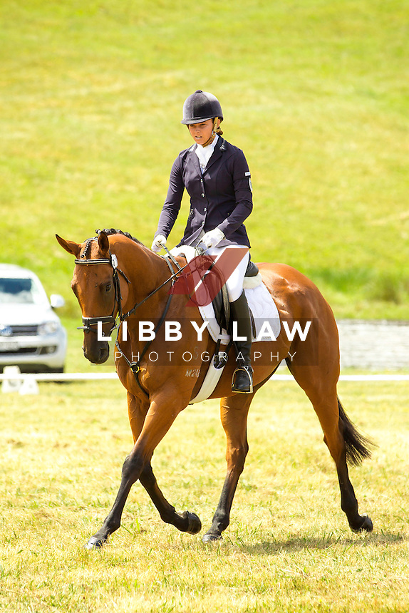 NZL-Samantha Felton (RICKER RIDGE RODSTAR)  INTERIM-5TH: BNZ BANKING CNC105: 2014 NZL-Troy Wheeler Contracting Springbush Horse Trial (Saturday 15 February) CREDIT: Libby Law COPYRIGHT: LIBBY LAW PHOTOGRAPHY - NZL