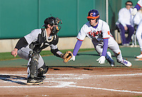 Steve Wilkerson (17) of the Clemson Tigers scores on a Shane Kennedy triple with Wofford Terriers catcher Luke Feisal (2) defending in the third inning of a game on Wednesday, March 6, 2013, at Doug Kingsmore Stadium in Clemson, South Carolina. Clemson won, 9-2. (Tom Priddy/Four Seam Images)