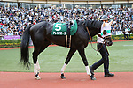 Ares Barows, AUGUST 19, 2018 - Horse Racing : Ares Barows is led through the paddock before the TV Nishinippon Corp.Sho Kitakyushu Kinen at Kokura Racecourse in Fukuoka, Japan. (Photo by Eiichi Yamane/AFLO)