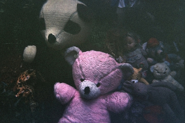 A pile of stuffed animals in the front yard of a brownstone on Park Place.
