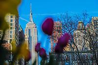 NEW YORK, EUA, 23.04.2018 - CLIMATE-EUA - Flores são vistas com o Empire States Building ao fundo na ilha de Manhattan na cidade de Nova York nesta segunda-feira, 23. (Foto: William Volcov/Brazil Photo Press)