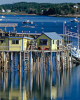 Swans Island, ME<br /> Yellow wharf and lobster boats at Burncoat Harbor