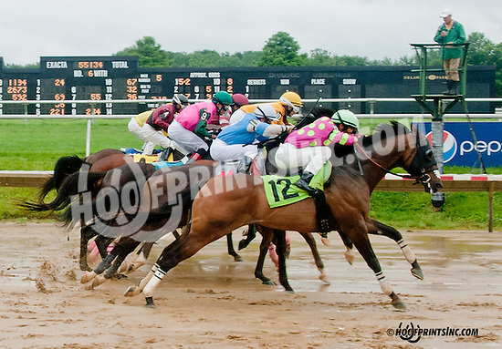 Thistle Deu winning at Delaware Park on 7/1/13