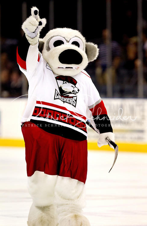 The Charlotte Checkers Professional Ice Hockey Franchise Patrick