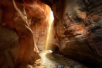 Shafts of light in slot canyon. Kanarra Creek, Utah. Dixie National Forest