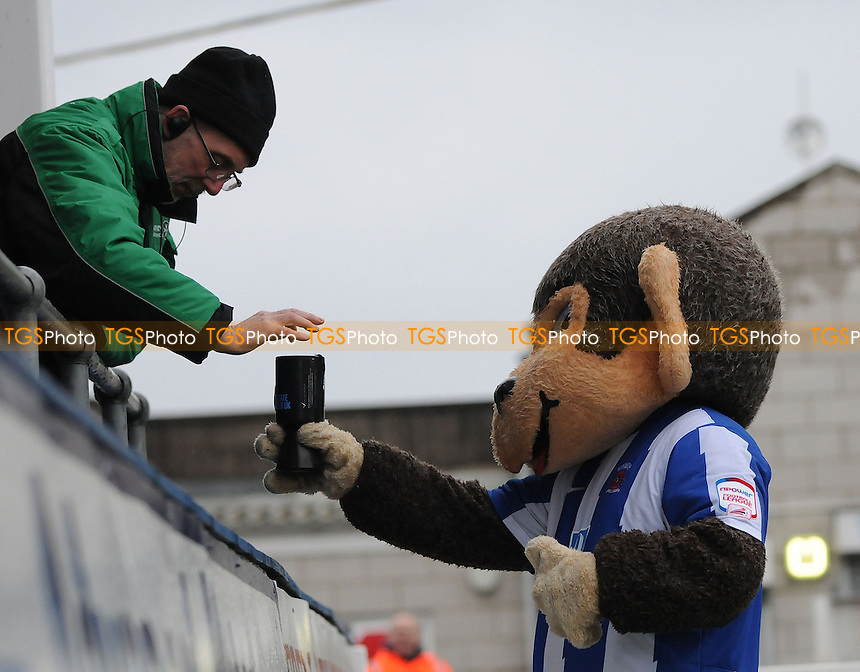 Hartlepool United mascot H Angus collects money for his charity - Hartlepool United vs Yeovil Town - NPower League One Football at Victoria Park, Hartlepool - 09/03/13 - MANDATORY CREDIT: Steven White/TGSPHOTO - Self billing applies where appropriate - 0845 094 6026 - contact@tgsphoto.co.uk - NO UNPAID USE.