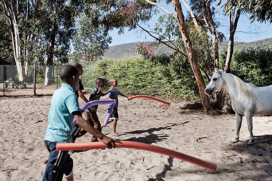 CAPE TOWN, SOUTH AFRICA JANUARY 2011:<br />Equine assisted therapy at De Grendel farm Cape Town, through the Montrose clinic and foundation.The clinic treats patients with addiction illnesses such as alcoholism and eating disorders and the foundation is a charity that helps with street children from the townships.<br /> Elkana Childcare Safe house, adrop-in centre and a shelter for children on the street. The centre is based in Malmesbury, Western Cape and is for children who have been through emotional, physical and sexual misuse.<br />here at the second week of a 6 week equine therapy programme.   @ GDS