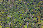 Bolivia, Beni Department, aerial view of pristine Amazonian rain forest,