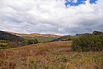 Widok na Tarnice z Doliny Wołosatego