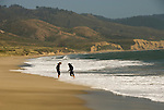 California: Limantour Beach at Point Reyes National Seashore near San Francisco. Photo copyright Lee Foster. Photo # casanf81265