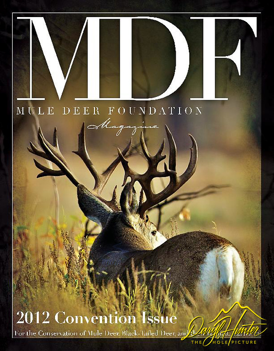 Giant Non-typical Mule Deer Buck on Cover of Mule Deer Foundation Magazine, photo by Daryl L. Hunter.