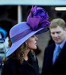 November 3, 2018 : A woman wears a large purple hat on Breeders Cup World Championships Saturday at Churchill Downs on November 3, 2018 in Louisville, Kentucky. Bill Denver /Eclipse Sportswire/CSM