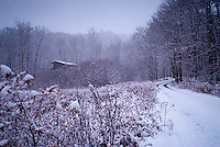 Snow covered gravel road through field