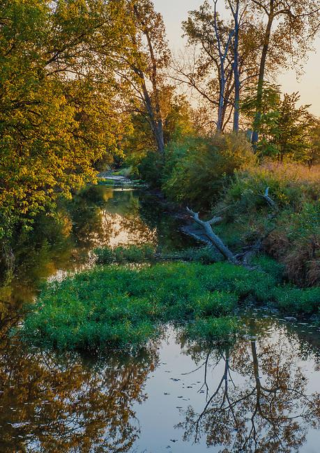 Prairie Creek flows through Midewin National Yallgrass Paririe in Autumn Will County, Illinois