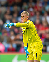Everton Jordan Pickford during the Premier League match between Crystal Palace and Everton at Selhurst Park, London, England on 10 August 2019. Photo by Andrew Aleksiejczuk / PRiME Media Images.