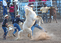 TOHONO O'odham 76th RODEO and FAIR