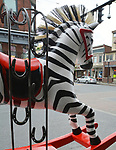 "A view of, ""Deebra at the Zoo"" by artist, Debra Ricks, one of the 35 Artist painted Rocking Horses on display around Saugerties, NY as part of the Chamber of Commerce sponsored Art in the Village Project titled ""Rockin' Around Saugerties."" This photo taken on Friday, May 26, 2017. Photo by Jim Peppler. Copyright/Jim Peppler-2017."