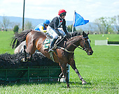 2013 Steeplechase horse index