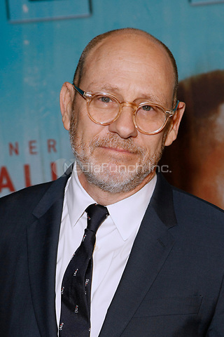 Los Angeles, CA - JAN 10:  Daniel Sackheim attends the HBO premiere of True Detective Season 3 at the DGA Theater on January 10 2019 in Los Angeles CA. Credit: CraSH/imageSPACE/MediaPunch