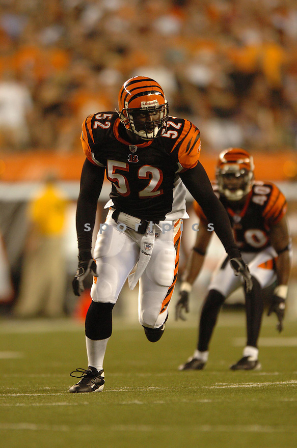 LEMAR MARSHALL, of the Cincinnati Bengals, during the  Bengals game against the Baltimore Ravens in Cincinnati, Ohio on Septmeber 9, 2007.  The Bengal won the game 27-20.... SportPics.......