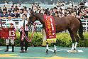 Horse Racing: Kansai Telecasting Corp. Sho Rose Stakes