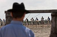 France/13/Bouches du Rhone/Camargue/Parc Naturel Régionnal de Camargue/Saintes Maries de la Mer: Gardians dans une manade lors du tri des taureaux