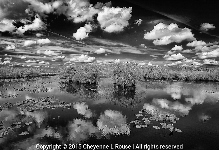 Everglades Reflection - S FL - Anhinga Trail - Clouds