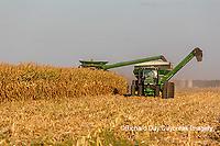 63801-08008 Corn Harvest John Deere combine Marion Co. IL