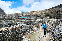 Trail running through Dingjung after running down Renjo La Pass while on a running tour of the 3 Passes Tour, Khumbu Valley, Nepal.