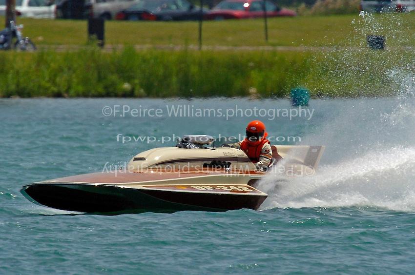"""GP-242 """"Dynasty"""" (Lauterbach Grand Prix hydroplane)"""