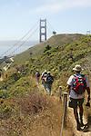 1176 Coast Walk