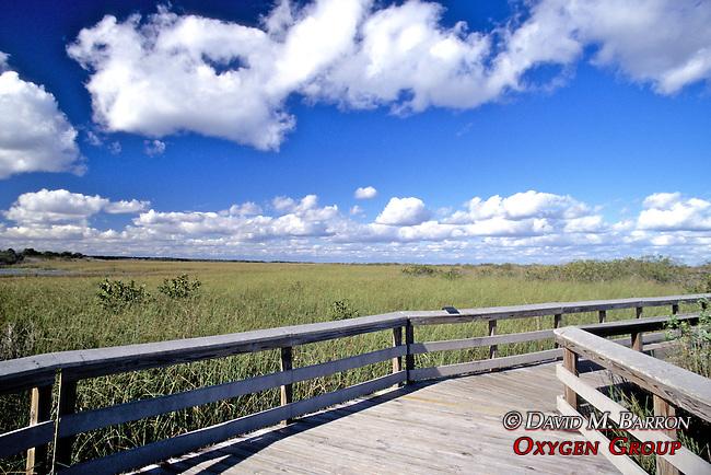 Everglades Scenic